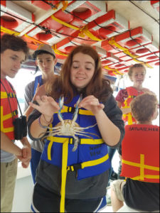 CGS students gathering crabs on Chesapeake Bay Foundation boat trip.